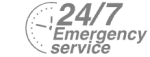 24/7 Emergency Service Pest Control in Plumstead, SE18. Call Now! 020 8166 9746