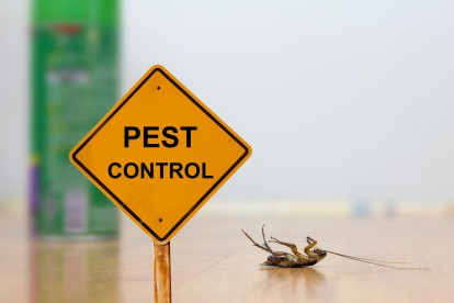 Pest Contol in Plumstead, SE18. Call Now 020 8166 9746